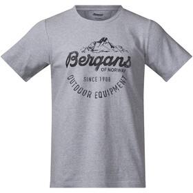 Bergans Classic Camiseta Hombre, gris